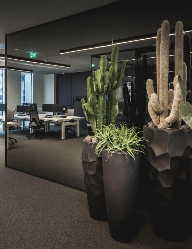 Equinex, Amsterdam   Plan Effect